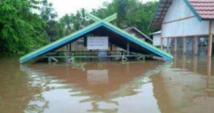 LensaHukum.co.id - Sungai Barito Kalimantan Tengah Meluap di Hari HUT RI KE 72 2 310x165 - Sungai Barito Kalimantan Tengah, Meluap di Hari HUT RI KE-72