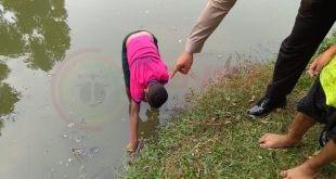 LensaHukum.co.id - IMG 20190817 WA0002 2 310x165 - Seorang Anak Kecil Menemukan Granat Nanas Di Taman Kumis Jakarta Timur